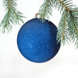 Glass ball on christmas tree on white ba — Stock Photo