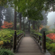 Stock Photo: Bridge in Japanese Garden