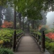 The Bridge in Japanese Garden - Stock Photo