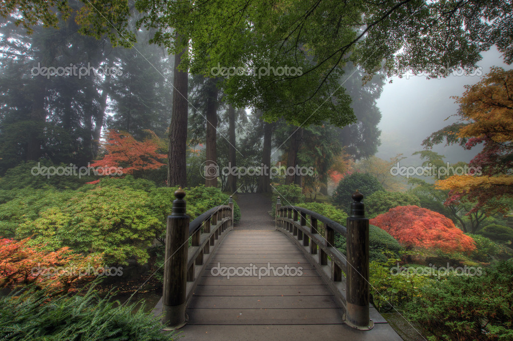 The Bridge in Portland Japanese Garden in the Fall  Stok fotoraf #1812936