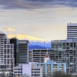 Portland Downtown Skyline — Stock Photo