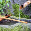 Bamboo Water Fountain - Stock Photo