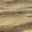Sandstone Rock Texture — Stock Photo