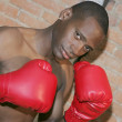 Boxer guy - Foto Stock