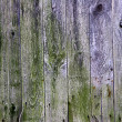 Stock Photo: Rotting wood background