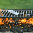 Outdoor bbq pit - Stock Photo