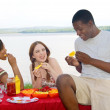 Three friends picnic — Stock Photo