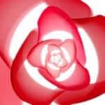 Rose fractal — Stockfoto