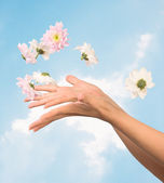 Women hands and flowers — Stock Photo