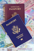 U .S. personal and official passports — Stock Photo