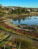 Uitzicht op de waterkant in victor harbor — Stockfoto