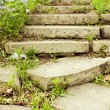 Stock Photo: Stone stairway on a garden path vertical