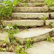Foto Stock: Stone stairway on garden path vertical