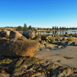 Foto Stock: Large rocks at low tide in Victor Harbor