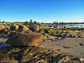 Large rocks at low tide in Victor Harbor — Stock Photo