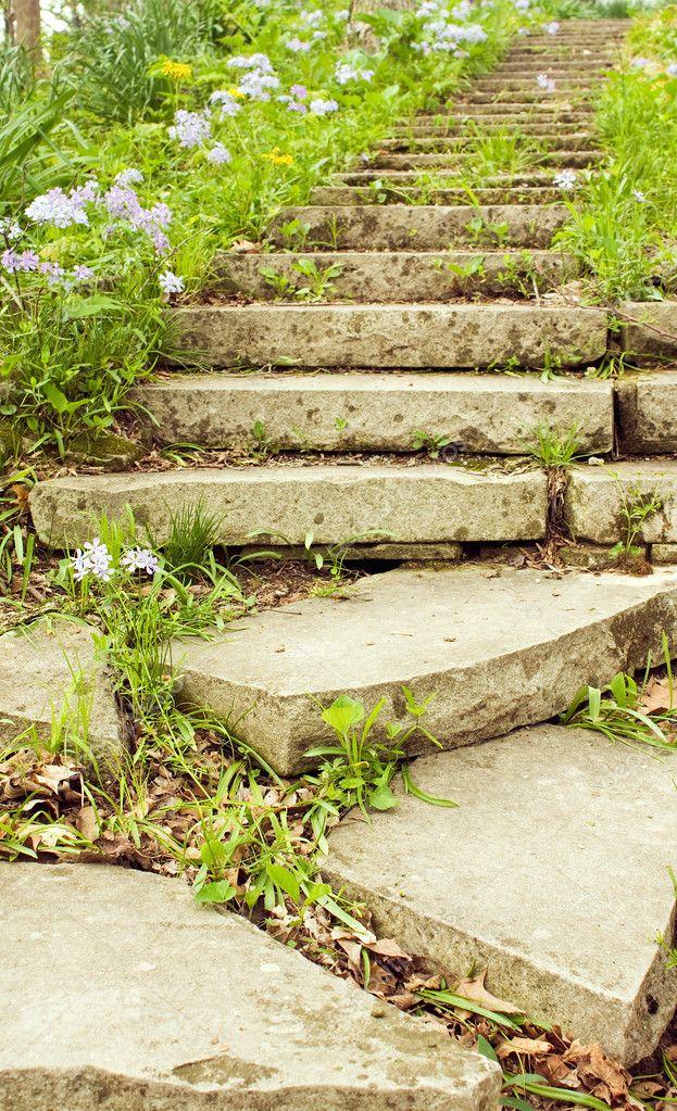 jardim vertical escada:Escada de pedra forrada com Flox de floração em um caminho de jardim