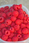 Fresh-picked red raspberries ready to ea — Stock Photo