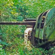 Стоковое фото: World War II erJapanese guns