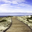 Foto Stock: Boardwalk over sand dunes