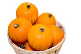 Small pumpkins in a basket — Stock Photo