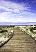 Boardwalk over sand dunes — Stock Photo