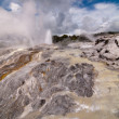 The Pohutu Geyser in Rotorua  in NZ — Stock Photo