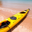 Kayak, Abel Tasman, New Zealand — Stock Photo