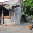 Traditional conutry house with Cock — Stock Photo