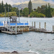 Stock Photo: Pier locate in beautiful place, NZ