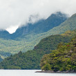 Royalty-Free Stock Photo: Valley  in doubtful sound