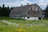Weather beaten white barn — Stock Photo