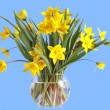 Bouquet of yellow tulips in a glass vase — Stock Photo #2514252