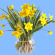 Stock Photo: Bouquet of yellow tulips in a glass vase