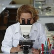Female researcher - Foto Stock