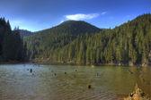 赤い湖、ルーマニア — ストック写真