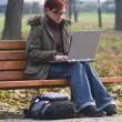 Outdoor computer work — Stock Photo #1985243