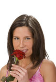 Scent of a rose — Stock Photo