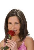 一朵玫瑰的香味 — 图库照片