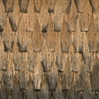 Wooden tiles texture — Stock Photo