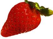 Strawberry Kiss — Stock Photo