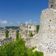 Stock Photo: Ruins of fortress