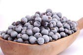 Black currants in spoon — Stock Photo