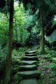 Mountain paths — Stock Photo