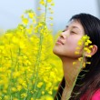Pretty girl in rape flowers — Stock Photo #1866922