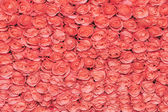 Pretty pink bed rose background — Stock Photo