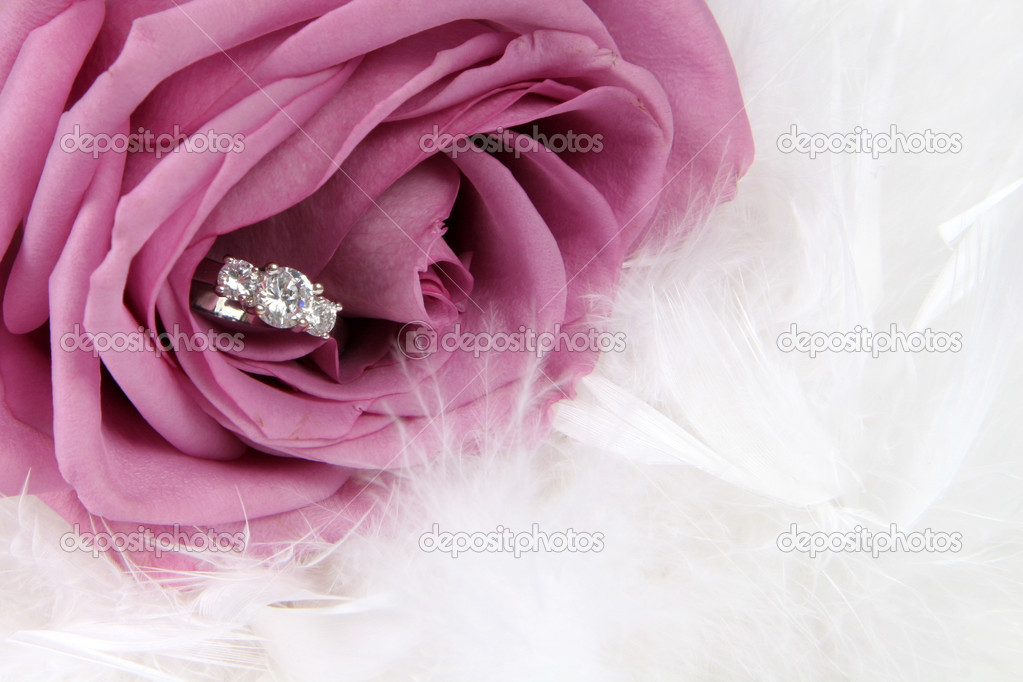 Wedding Ring in Rose, Will you marry me? — Stock Photo #1905526