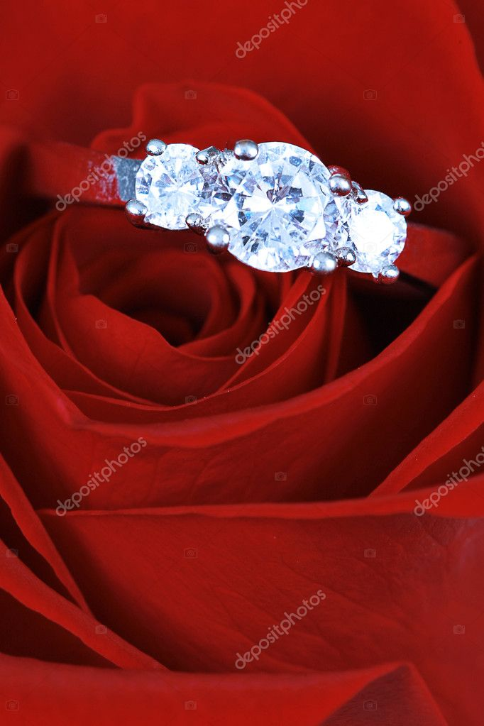 Engagement ring in taken closeup in red rose — Photo #1905588