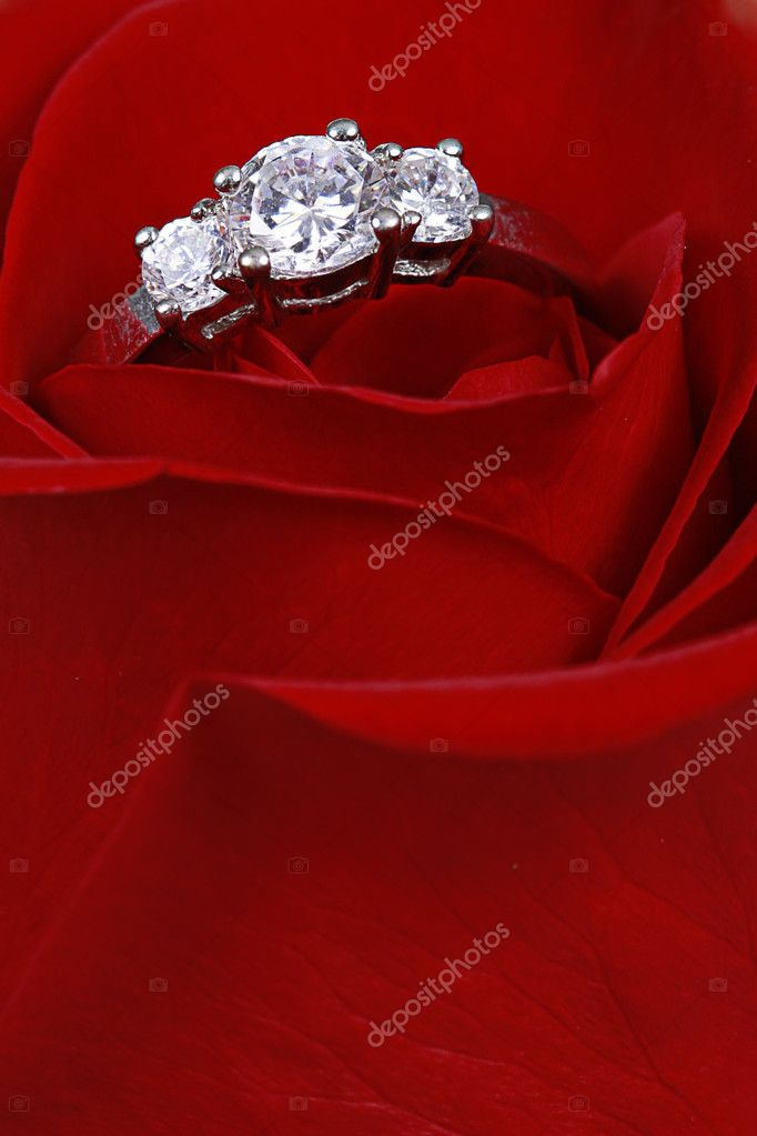 Wedding Ring in Rose, Will you marry me? — Stock Photo #1909093