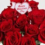 Happy Valentines Day on roses — Stock Photo