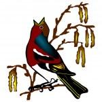 Bird chaffinch (Fringilla coelebs) — Stock Vector #1872028
